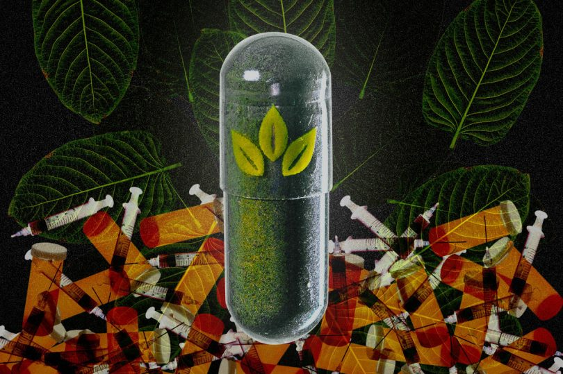 Kratom Capsule Photo: Jed Egan