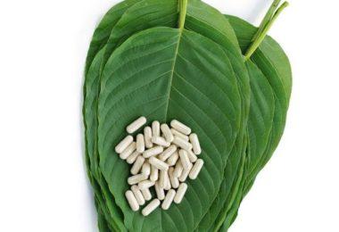 Kratom leaves and capsules